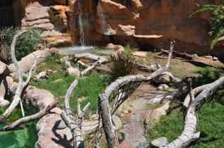 Reid Park Zoo animal habitat