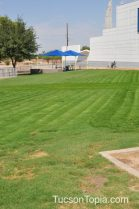 grassy picnic space at Tucson Jewish Community Center