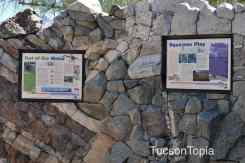 Geology Wall at Tohono Chul Park