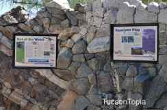 Geology Wall at Tohono Chul Park