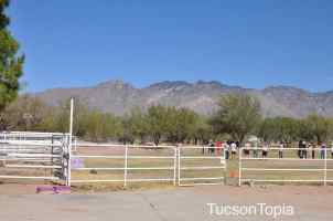 All grade levels at Tucson Waldorf School have two recesses