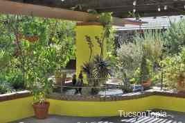 brightly-colored-patio-at-Tucson-Botanical-Gardens