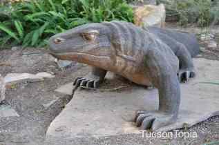 dragon at Tucson Botanical Gardens