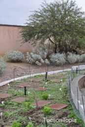 garden at Cornerstone Christian Academy