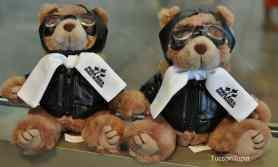 Pima Air _ Space Museum teddy bears