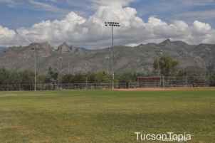baseball fields with a view at McDonald Park