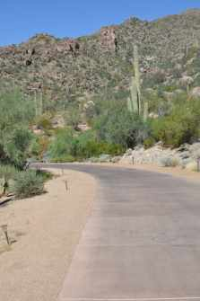 walking path at The Ritz-Carlton Dove Mountain