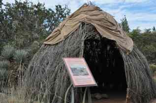 home exhibit at Desert Botanical Garden