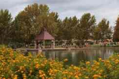 lake at Rancho Sahuarita