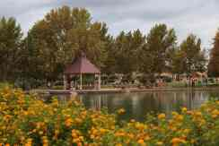 lake at Rancho Sahuarita