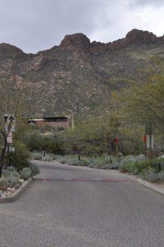 Pima Canyon Trailhead