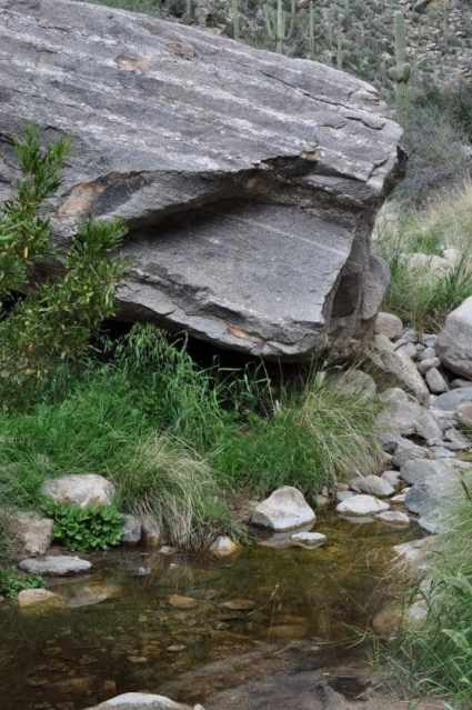 water at Pima Canyon