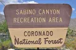 Sabino Canyon Recreation Center