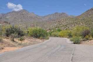paved trail at Sabino Canyon