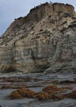 Del Mar Beach near Carlsbad