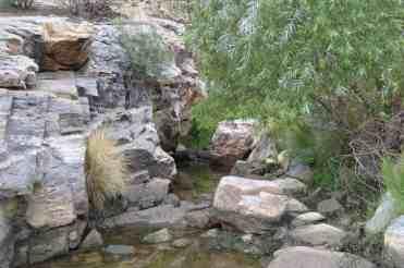 rocks and water at Sabino Canyon by Michael Eskue