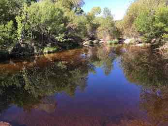 water at Sabino Canyon