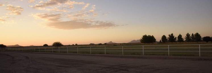 Marana Pumpkin Patch & Farm at sunset