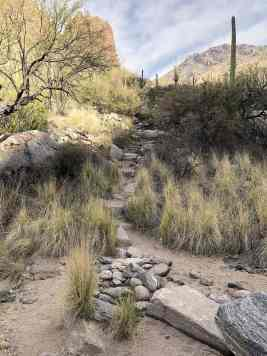 Stepstones on Ventana Canyon Hiking Trail