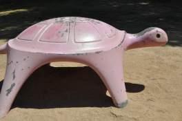 cement-turtle-Reid-Park