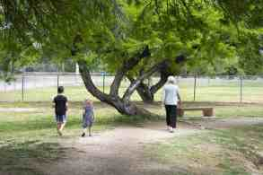 walking Fort Lowell Park