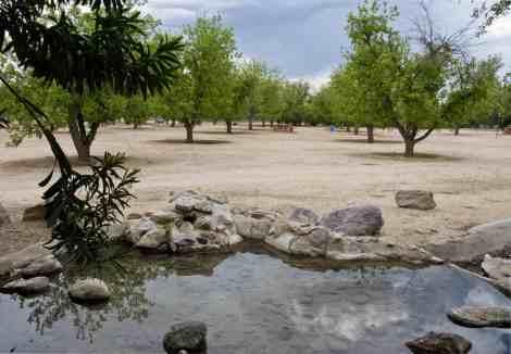 water stones pecan trees Fort Lowell Park