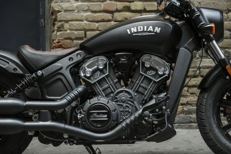 Indian Dark Horse
