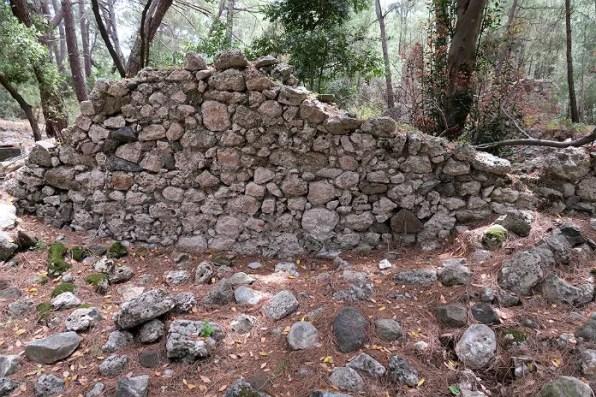 Mauern im Wald