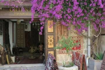 Titelbild mit dem Text: Ist in der Türkei Trinkgeld üblich und wie viel wird gegeben? - Foto eines einganges zu einem Teppichhändler mit der Aufschrift Orient Basar. Violette Blumen hängen an der Hauswan herunter.