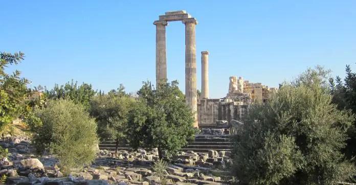 Säulen stehen zwischen Sträuchern und Bäumen in den Ruinen von Didyma.