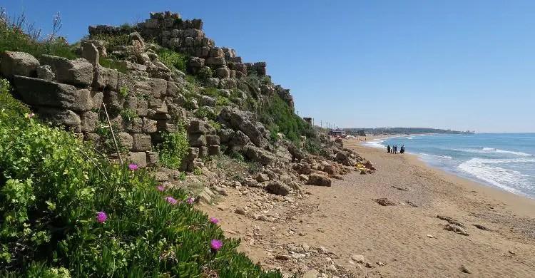 Der Blick von einem grün blühenden Hang mit violetten Blumen auf die alten Seemauern von Side und den darunterliegenden Sandstrand.