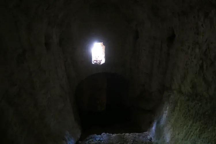 Es hängen Fledermäuse in einem dunklen Tunnel.
