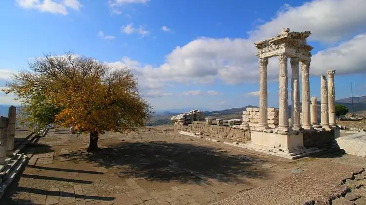 Baum mit goldgelben Blättern im Herbst und die weißen Säulen des Tempels