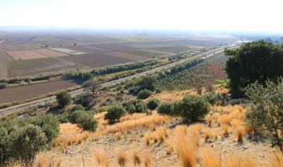 Felder im Mäander Delta