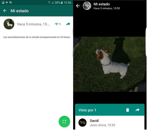 Visto estado whatsapp