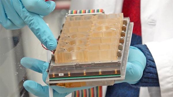 Científicos recrean el ciclo menstrual en un chip