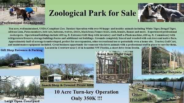 zoológico internet