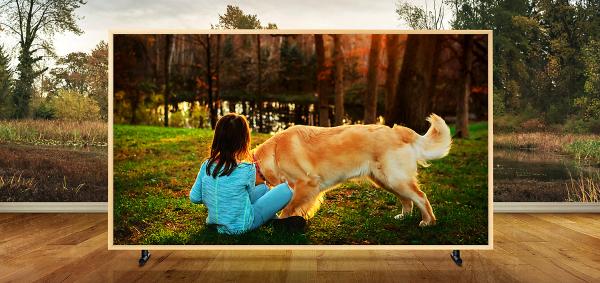Samsung The Frame, examinamos el televisión que exhibe obras de arte