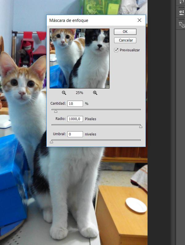 Mejorar una fotografía con Photoshop dos - Enfoque
