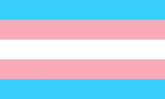 bandera trans emoji