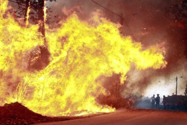 """Fogo em Tondela: """"são os palhaços dos comandantes lisboetas, que de fogo florestal percebem pouco"""""""