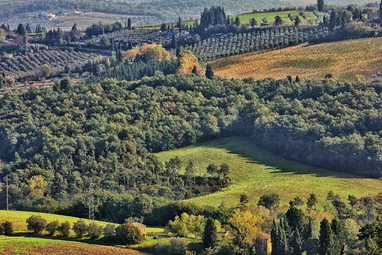 Toscana, colección de tentaciones