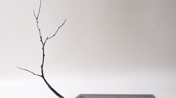 Transformaciones platonicas. Exposicion de Cristina Almodovar en APgallery