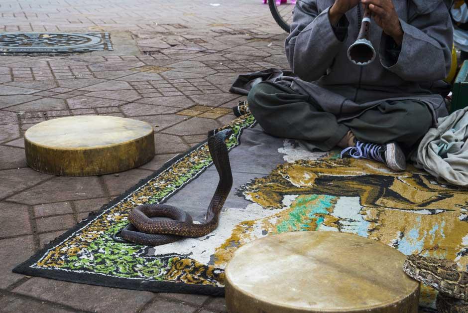 Viajar a Marrakech. Xperts de Tu Gran Viaje