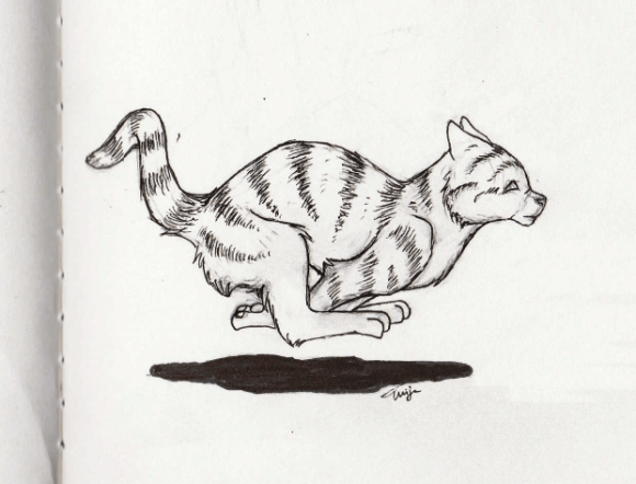Running cat 02 #inktober2017