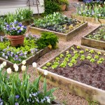 The Benefits Of Raised Bed Gardening Tui Landscape