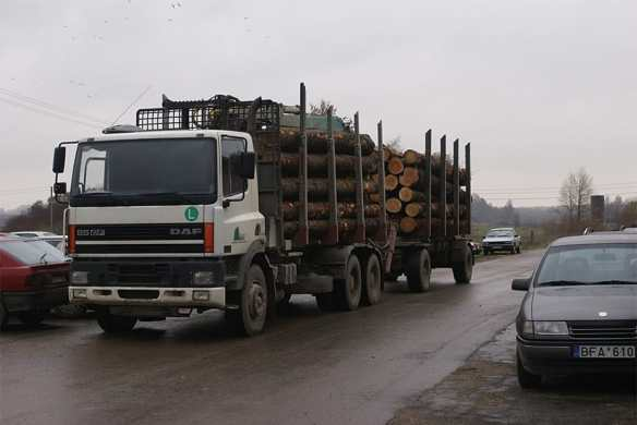 Logs arriving at the mill