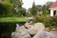 Hoveniersbedrijf-Odink-tuinen-1184