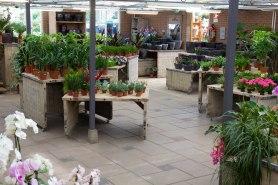 Tuincentrum-bloemsierkunst-Odink-winkel-3358