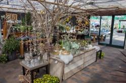 Tuincentrum-bloemsierkunst-odink-cadeauartikelen-kadoartikelen-4